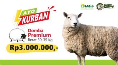 Banner Program Tipe Domba Premium                                      title=