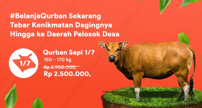 Banner program Belanja Qurban untuk Keluarga Lansia Dhuafa Pelosok Negeri
