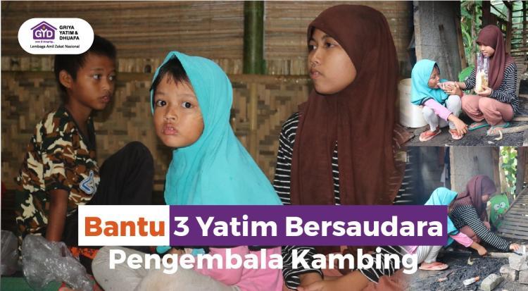 Banner program Bantu 3 Yatim Bersaudara Pengembala Kambing
