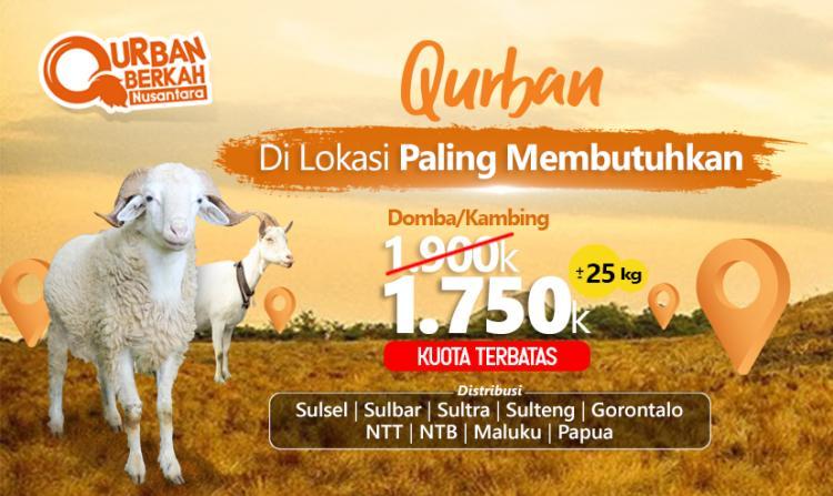 Banner program Qurban Promo