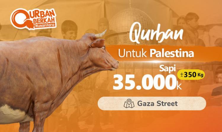 Gambar banner Qurban Sapi Palestina