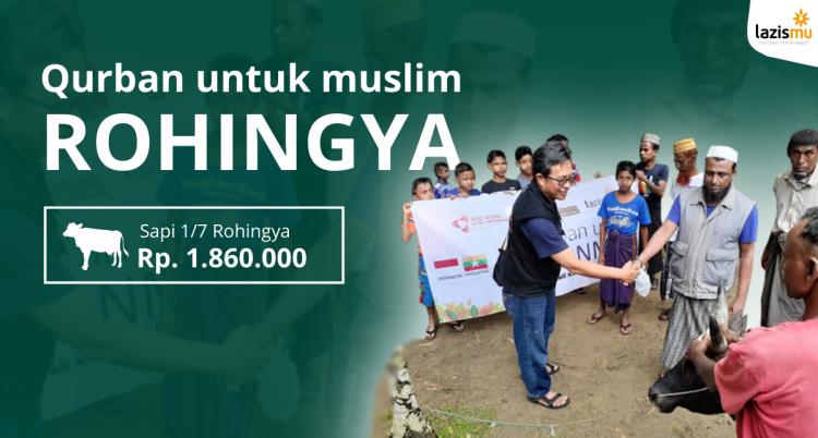 Banner program Qurban 1 per 7 Sapi Berjamaah Untuk Rohingya Harga Rp. 1.860.000,-